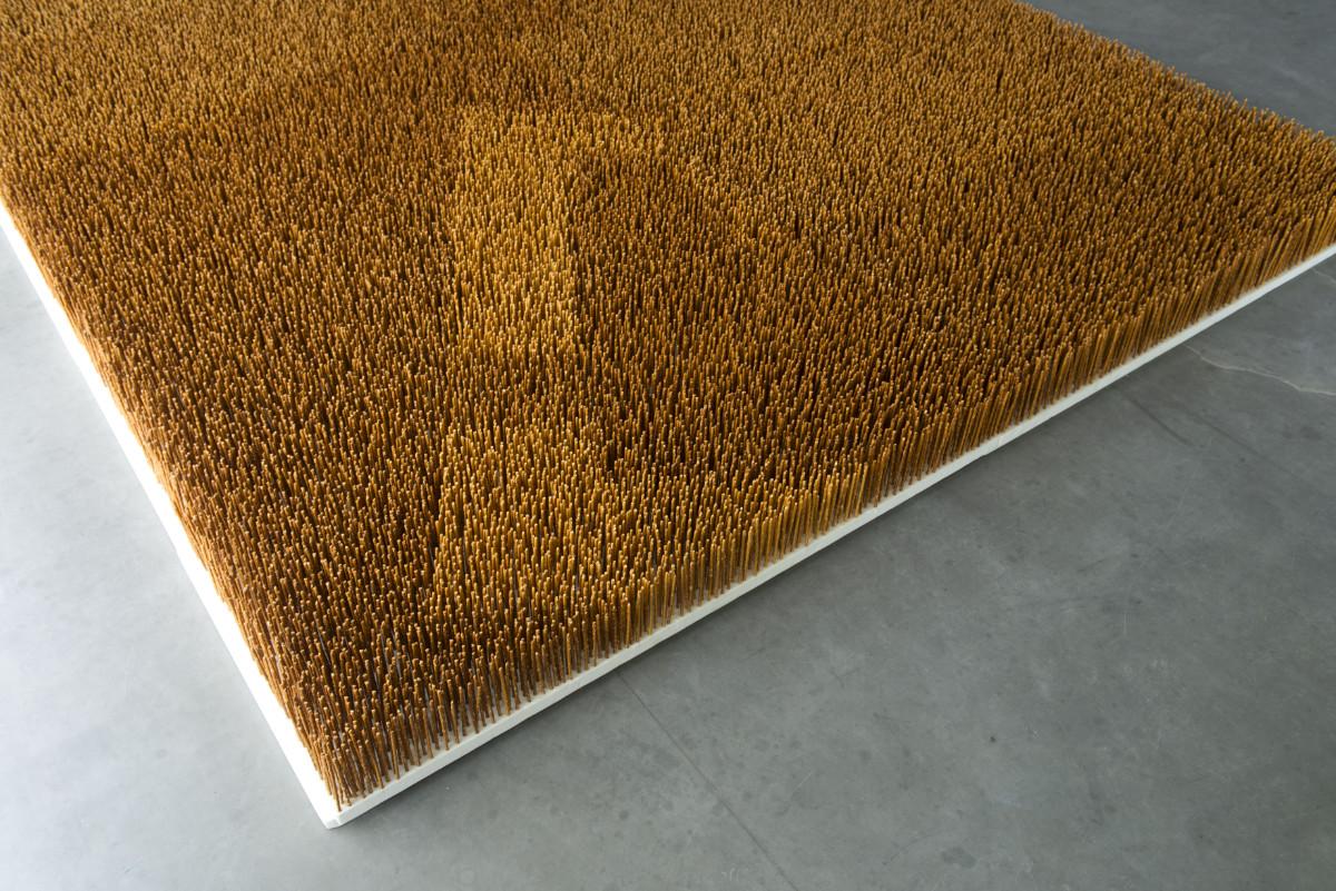 Garden VI, 2013, Pretzel Sticks, Styrofoam, 300 X 250 X 16 Cm, Gesellschaft Für Kunst Und Gestaltung, Bonn